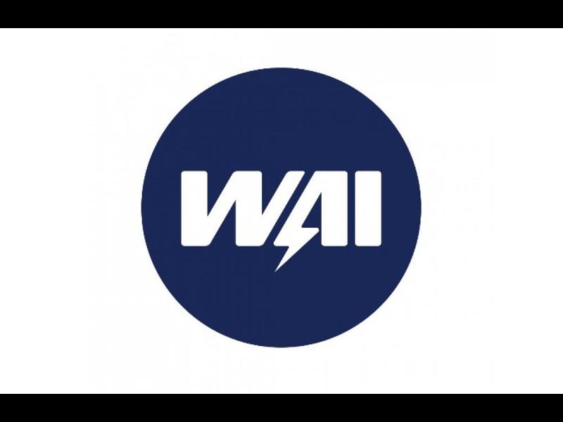 Логотип WAI