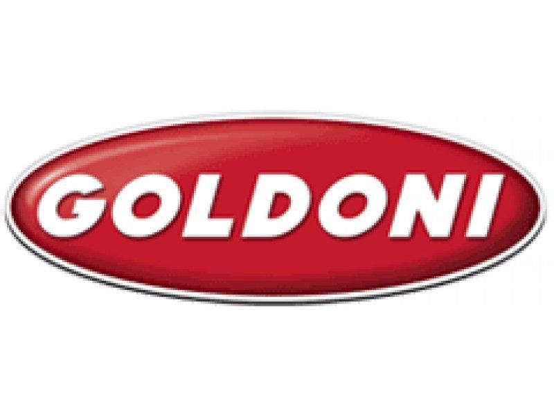 Логотип GOLDONI