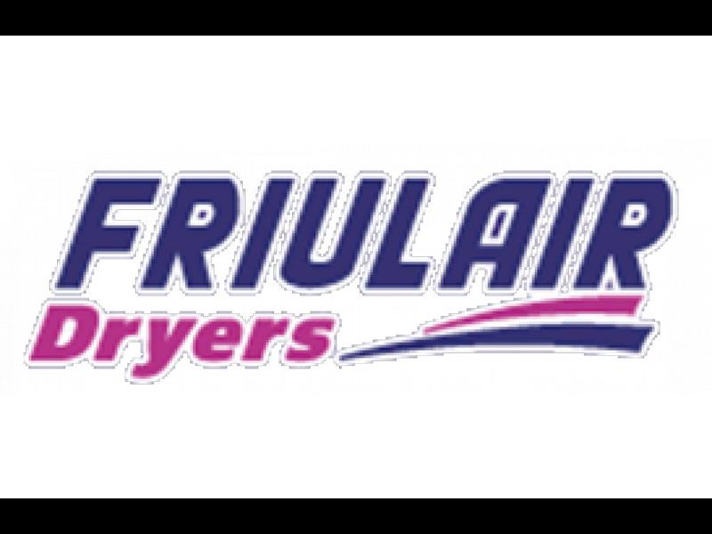 Логотип FRIULAIR